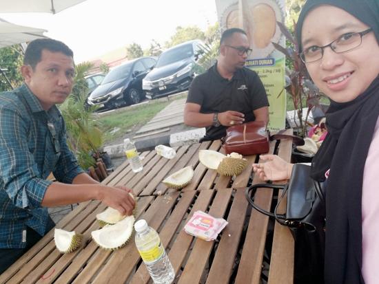 Durian Murah MITC