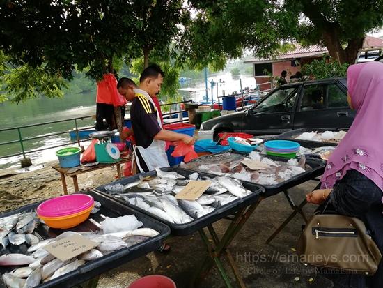 Ikan Segar di Kampung Setiawan Perak