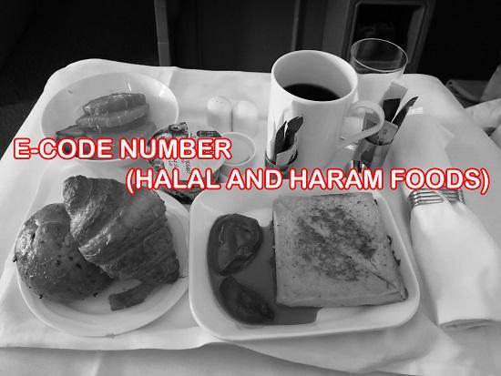 Senarai Nombor Kod E Halal dan Haram Dalam Pemilihan Makanan Penting Jadikan Panduan